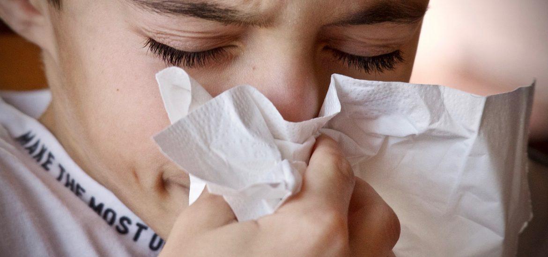 Allergiker können Aufatmen!