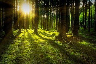 HAPPY - DAY BEI HAPPY FUTURE - RESILIENZ - STEHVERMÖGEN - KRISENSICHER